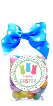 Pastel Speckled Jelly Beans Regular Treat Bag (Candy)